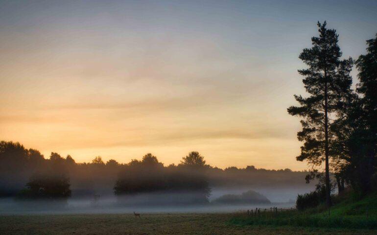 Jagen in Letland