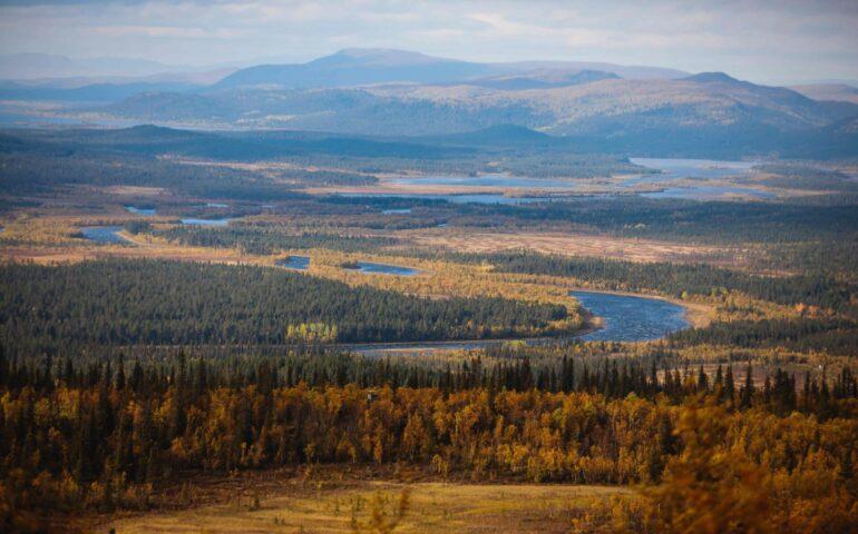Jagen in Zweden